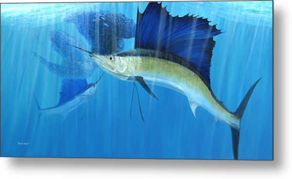 Teamwork Sailfish Metal Print