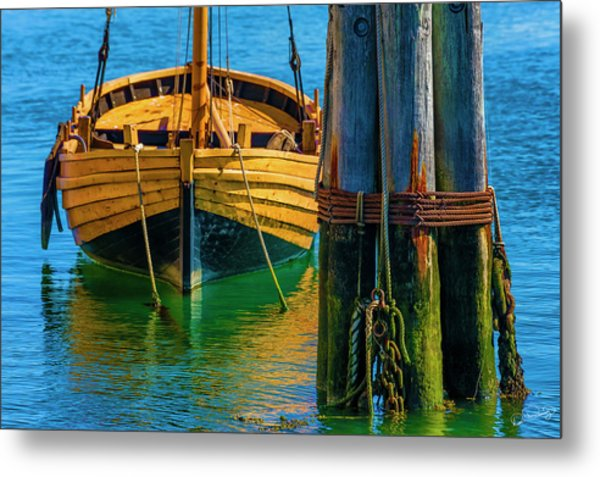 Tethered Metal Print