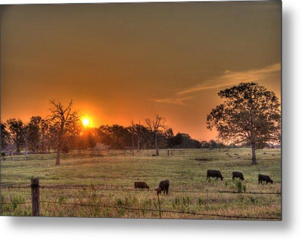 Texas Sunrise Metal Print