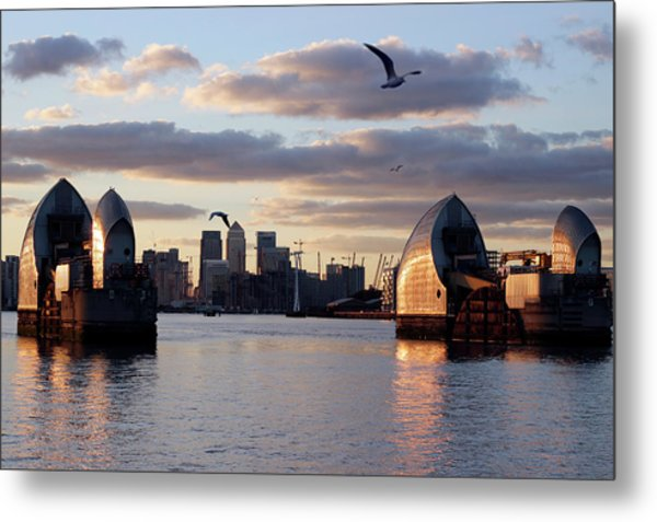 Thames Barrier And Seagulls Metal Print