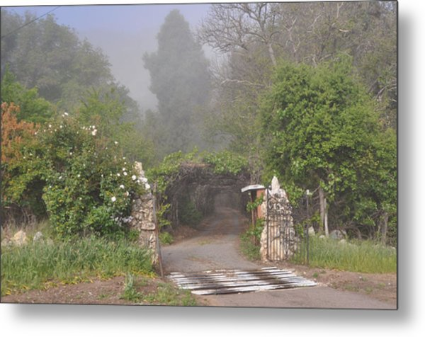 The Arbor In The Morning Metal Print