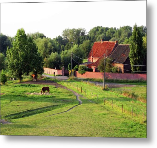 The Belgian Countryside Metal Print by David L Griffin