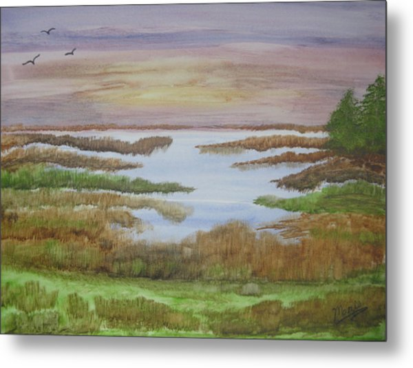 The Boggy Metal Print