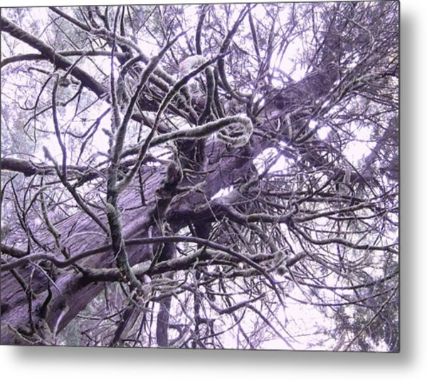The Deception Tree Metal Print