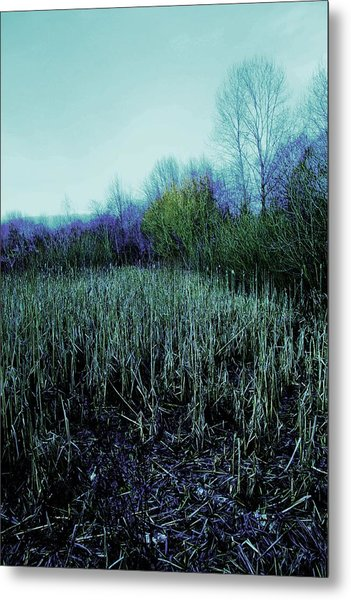 The Diary Metal Print by Dean Edwards