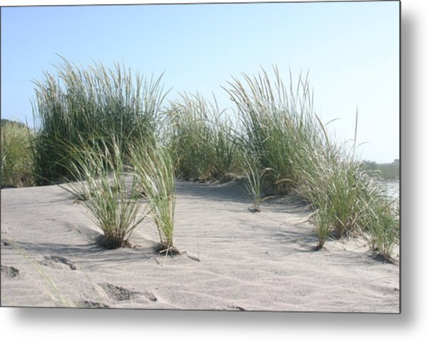 The Dunes Metal Print by Dennis Curry