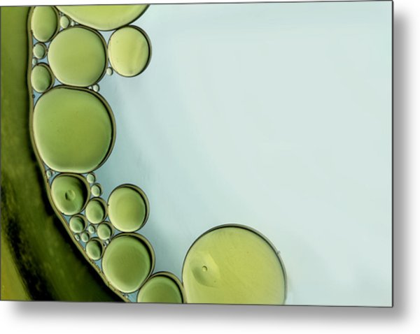 The Grass Is Greener Metal Print by Rebecca Cozart