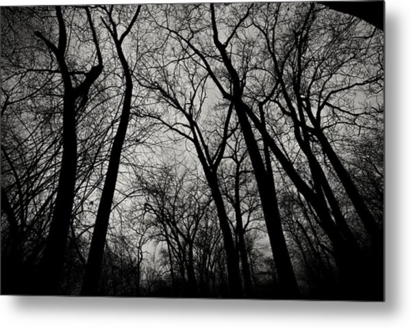 The Haunt Of Winter Metal Print