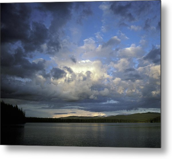 The Land Of Loon Metal Print by Charlie Osborn