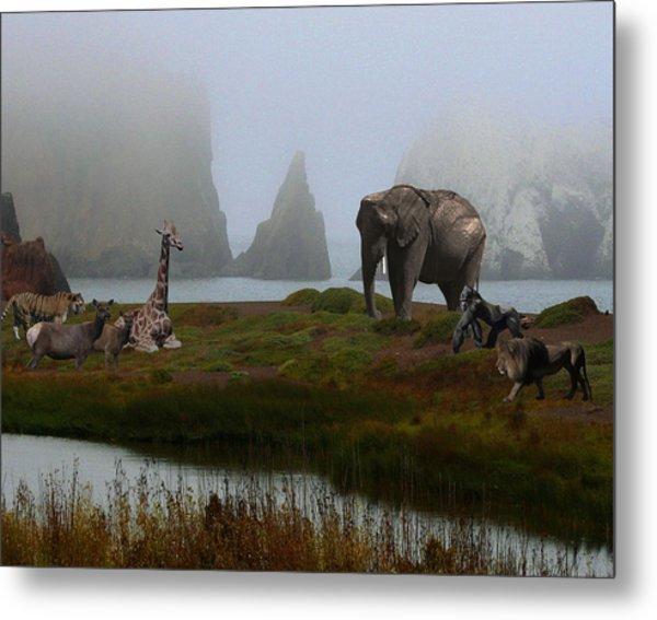 The Menagerie 2 Metal Print by Wingsdomain Art and Photography