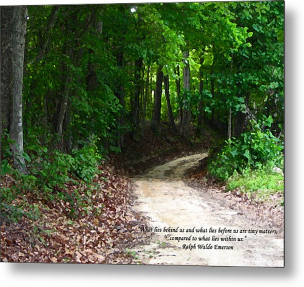 The Path Metal Print by Ginger Howland