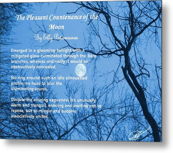 The Pleasant Countenance Of The Moon Metal Print