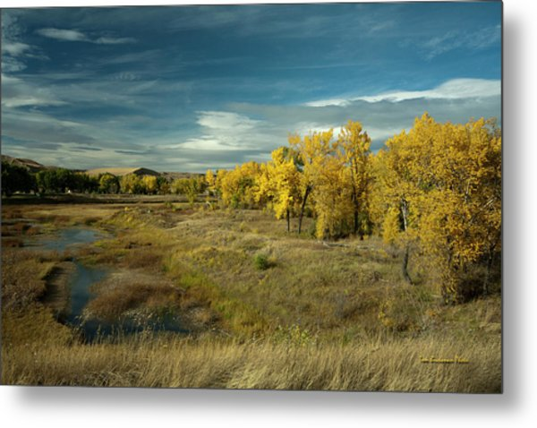 The River Bottom Metal Print