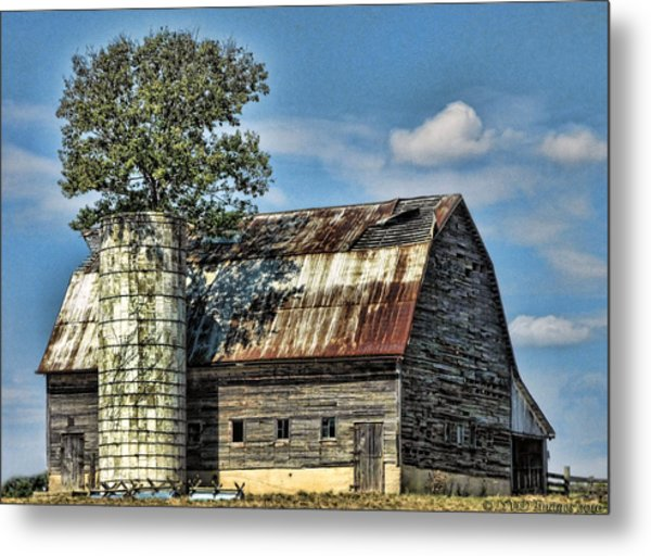 The Tree Silo Metal Print