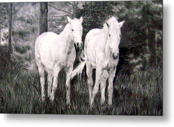 The White Stallions Metal Print