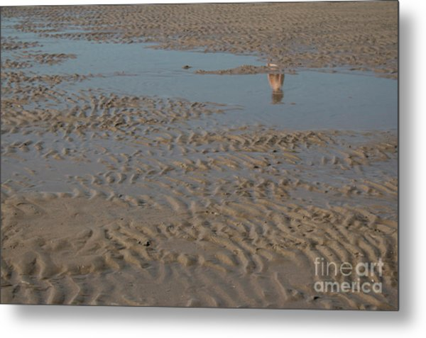 There Once Was A Boy... Metal Print