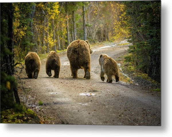 Three Little Bears And Mama Metal Print