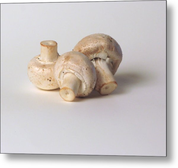 Three Mushrooms Metal Print by Robert Bissett