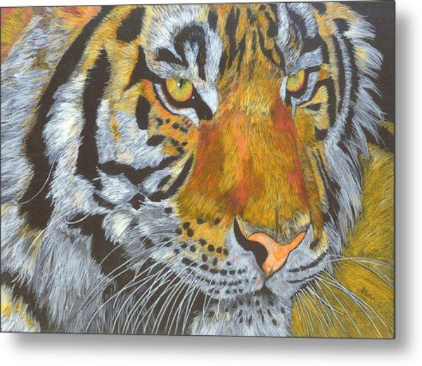 Tigress Metal Print by Angela   Cater
