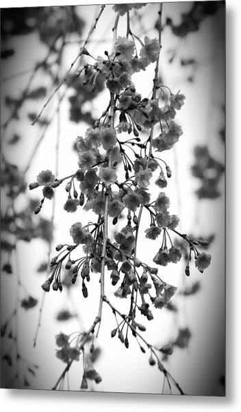 Tiny Buds And Blooms Metal Print