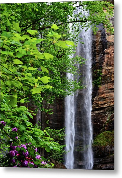 Toccoa Falls In Georgia Metal Print by Eva Thomas