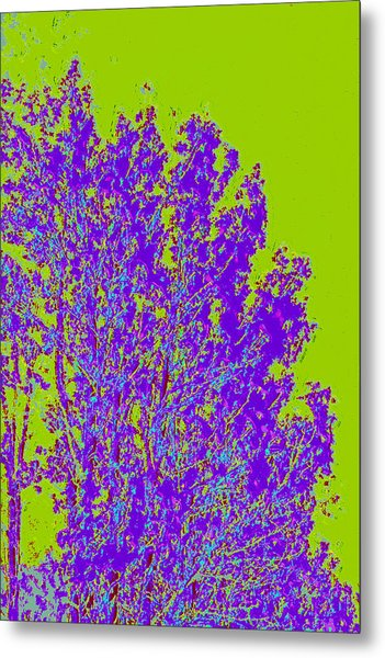 Tree Leaves D4 Metal Print by Modified Image