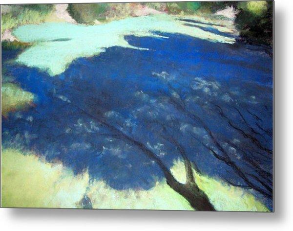 Tree Shadows Metal Print by Anita Stoll