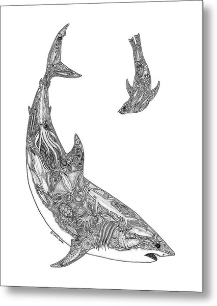 Tribal Great White And Sea Lion Metal Print