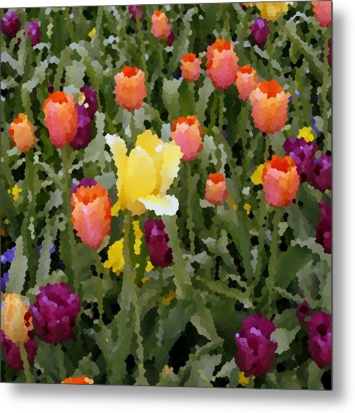 Tulips Metal Print by Rodger Mansfield