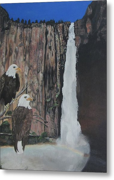 Two Eagles Near The Falls Metal Print