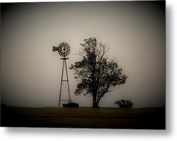 Two Old Friends Metal Print