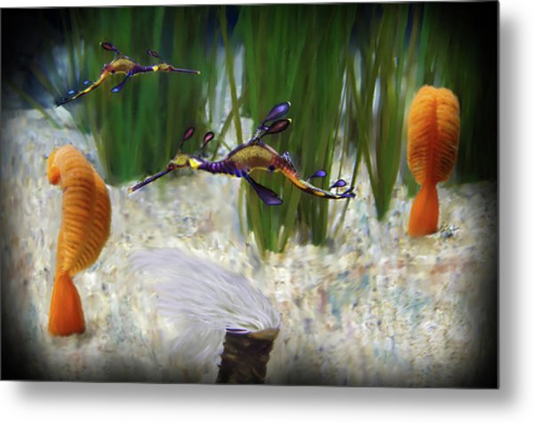 Two Sea Horses Metal Print