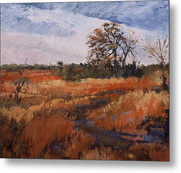 Typical Texas Field Metal Print by Jimmie Trotter