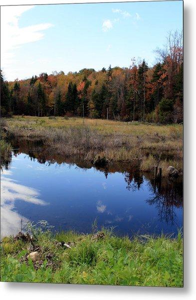 Vermont Reflections 1 Metal Print by George Jones