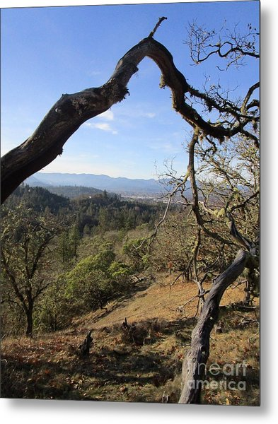 View From Cathedral Hills Metal Print