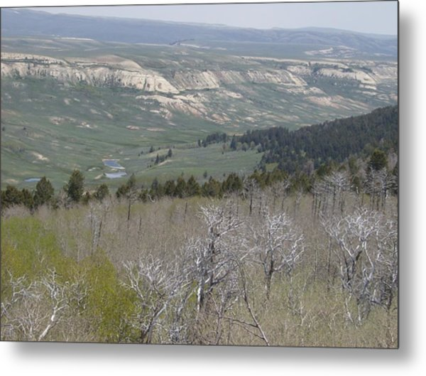 View From The Top Metal Print by Susan Pedrini