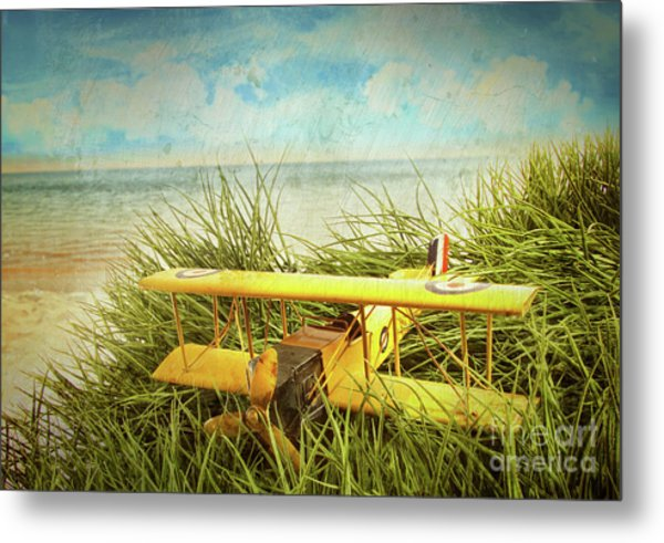 Vintage Toy Plane In Tall Grass At The Beach Metal Print