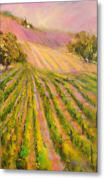 Vintners Delight Metal Print by Sally Seago