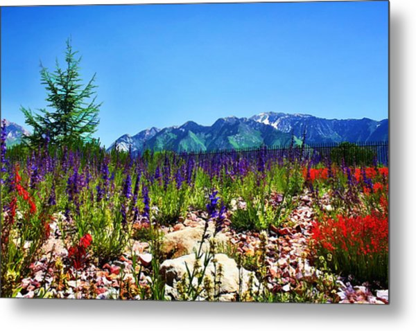 Wasatch Mountains In Spring Metal Print