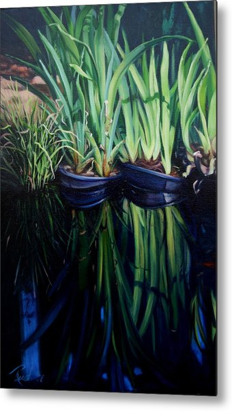 Water Garden Serie-h Metal Print by Patricia Reed