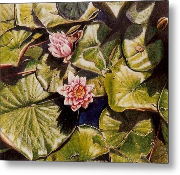 Water Lilies On The Ringdijk Metal Print by Constance Drescher