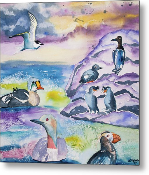 Watercolor - Alaska Seabird Gathering Metal Print