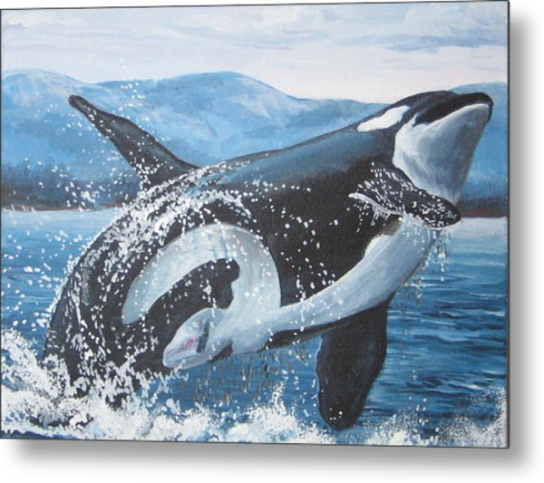 Whale Watching Metal Print by May Moore