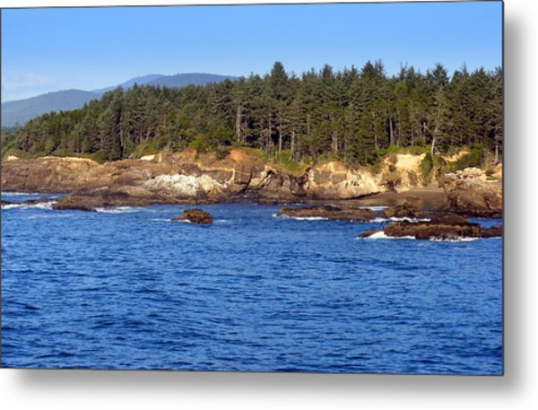 Where The Forest Meets The Ocean Metal Print by Coastal Shooter Photography by Kathy Scott
