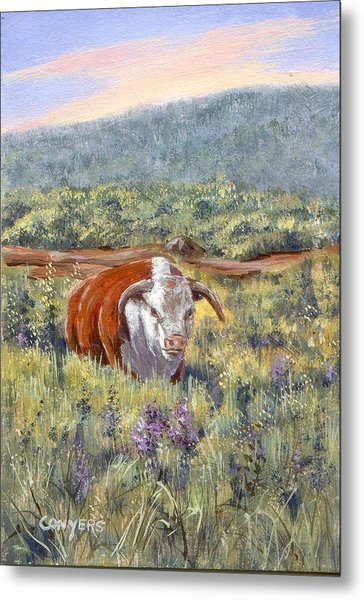 White Face Bull Metal Print by Peggy Conyers