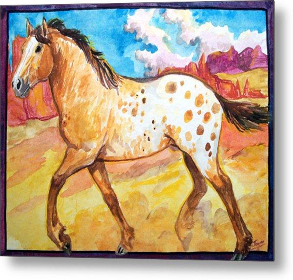 Wild Appaloosa Horse Metal Print