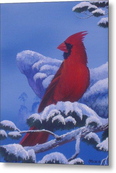 Winter Cardinal Metal Print by Michael Allen