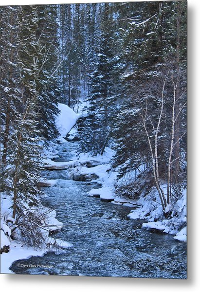 Winter In The Black Hills Metal Print by Dave Clark