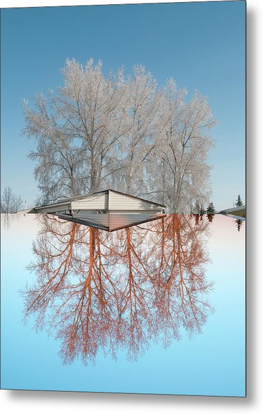 Winter To Spring Metal Print