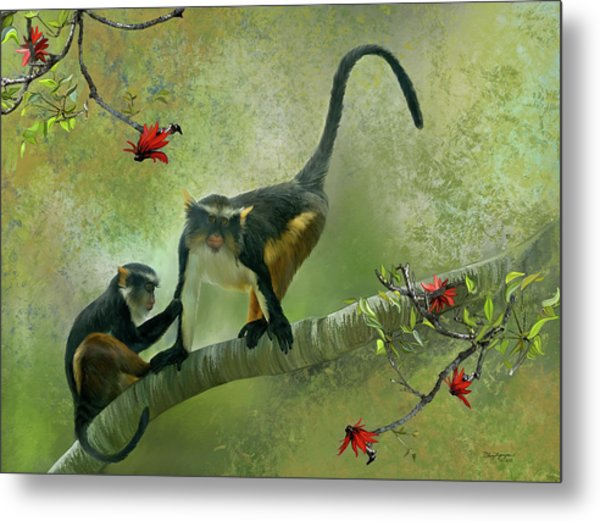 Wolf's Guenon Metal Print